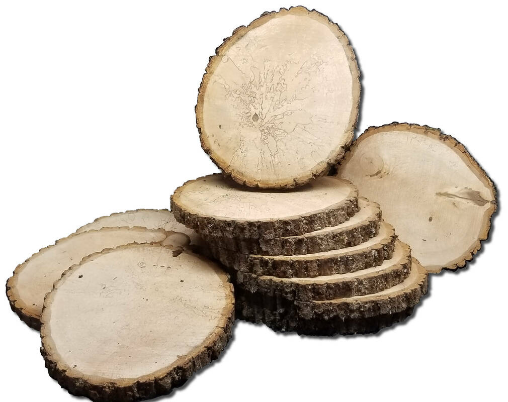 Oval shaped basswood log slices 10 - 11 inches