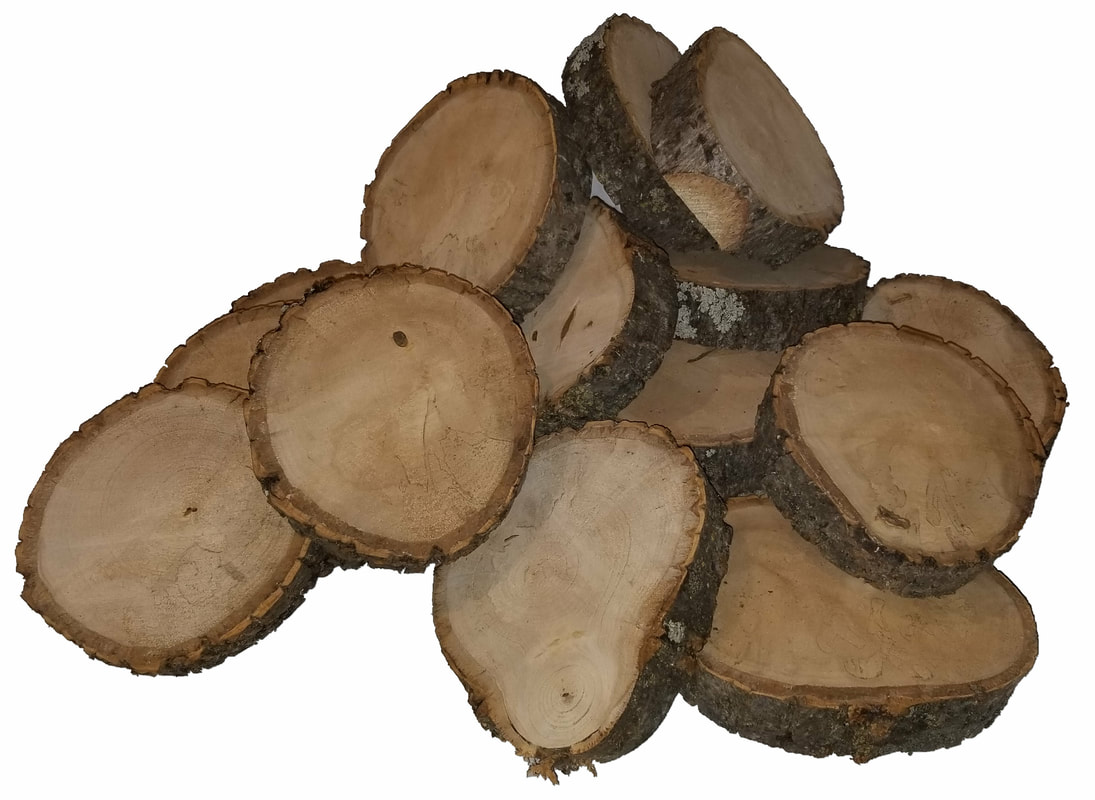 Round basswood log slices about 5
